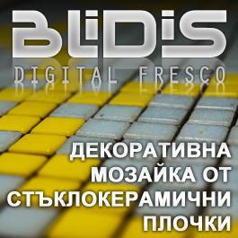 BLiDiS ltd.